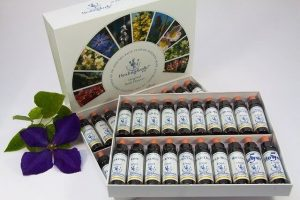 Picture of a set of bach flower essential oil