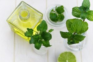 Mint leaves and mint oil in a container